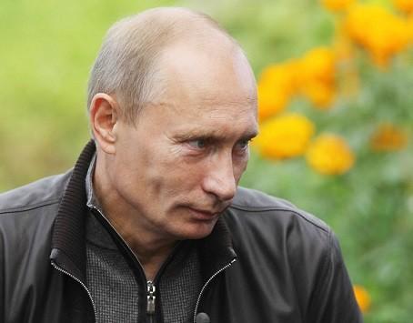 Портрет Путина 1