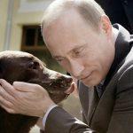 Портрет Путина 10